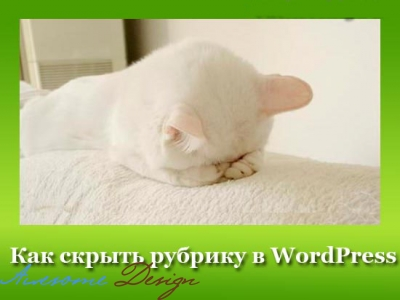 Плагин Advanced Category Excluder: скрываем рубрику в WordPress изображение поста
